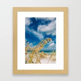 Gulf of Mexico Framed Art Print