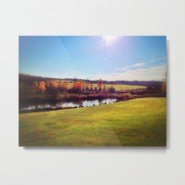 Beaver Pond - 2013 Metal Print
