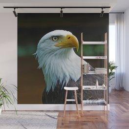 American Bald Eagle Head Wall Mural