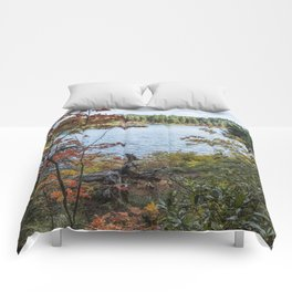 Splashes of Color Around Clear Lake Comforters