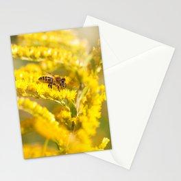 Bee sitting on Solidago virgaurea Stationery Cards