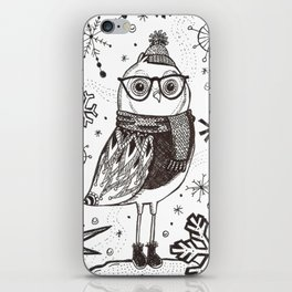 Cold Winter Owl iPhone Skin