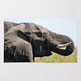 Drinking Elephant Rug