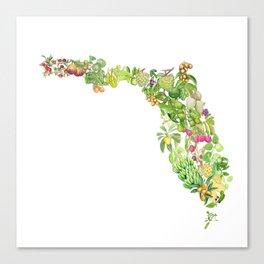 Fruits of Florida Canvas Print