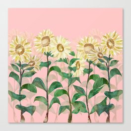 Sunflowers in Pink Canvas Print