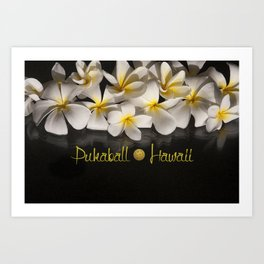 Hawaii Pukaball Plumeria Art Print