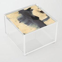 Washes Acrylic Box