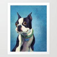 boston terrier Art Prints featuring Boston Terrier by Jackie Sullivan
