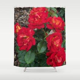 Bella Bouquets Shower Curtain