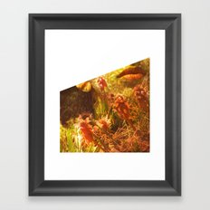 In The Woods They Thrive Framed Art Print