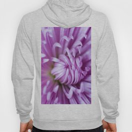 Purple Claws Hoody