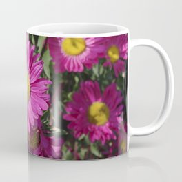Summer Asters 4636 Coffee Mug
