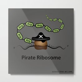 Pirate Ribosome Metal Print