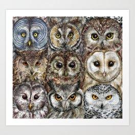 Owl Optics Art Print