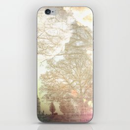 The Pickup iPhone Skin
