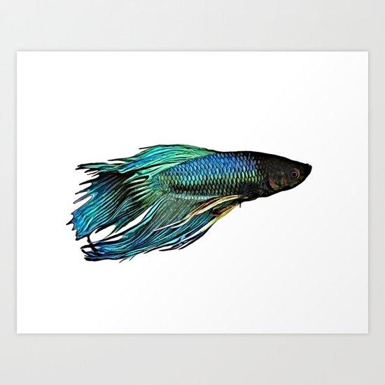 Betta Fish by pulios