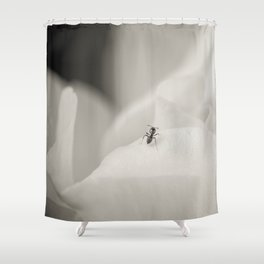 Explore like and ant Shower Curtain