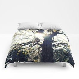 Golden Moss Comforters