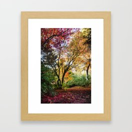 Beautiful Trees / 13 Framed Art Print