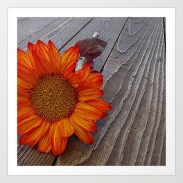 Autumn Photography - Orange Flower Art Print
