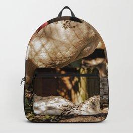 Mother Hen Backpack