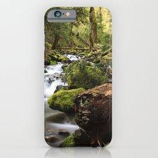 Paradise Creek IV iPhone 6s Slim Case