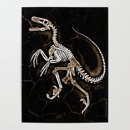 Dino Fossil 2 Poster