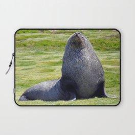 Fur Seal Laptop Sleeve
