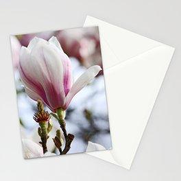 springtime! ... magnolia Stationery Cards