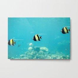 Moorish Idol Fish Metal Print