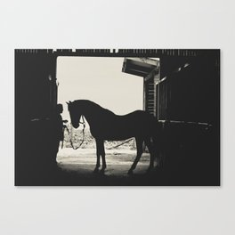 Going on a walk... Canvas Print