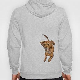 Maxwell the dog Hoody