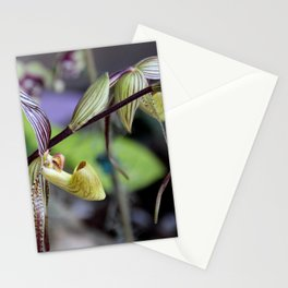 The Gentleness of Tears Stationery Cards