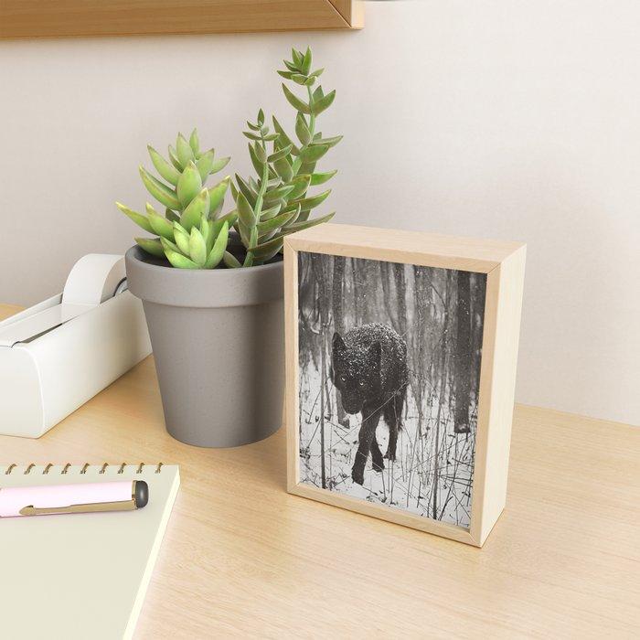 Snow Wolf Framed Mini Art Print