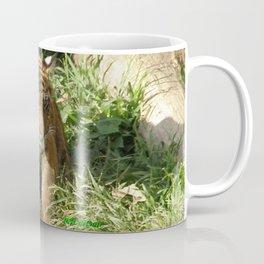 Young Tiger Coffee Mug