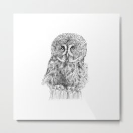 The Great Grey Owl Metal Print