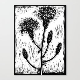Scrub Blazing Star Canvas Print