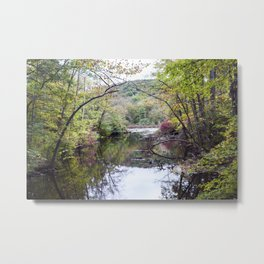 River of the Woodlands 03 Metal Print