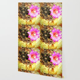 Calm Pink cute flowers bloomed in cactus Wallpaper