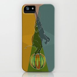 Balancing Elephant Act iPhone Case