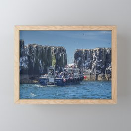 Passengers on board a boat at the farne Islands, Northumberland Framed Mini Art Print