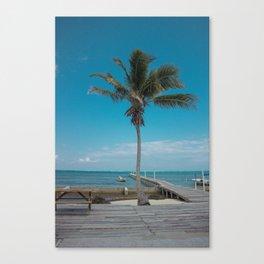 Scuba School Belize Palm Canvas Print