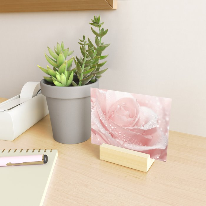 Rose 96 Mini Art Print