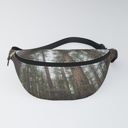 Through the Woods Fanny Pack
