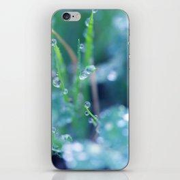Dewy Morning iPhone Skin