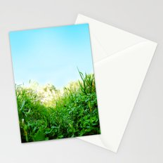 Microcosmo Stationery Cards