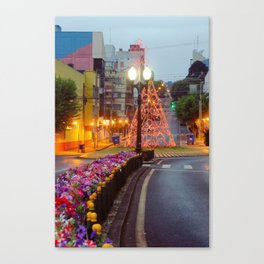 Morning lights and colors Canvas Print