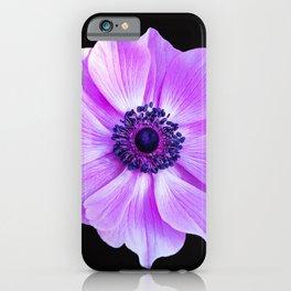 Purple Poppy iPhone Case