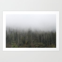 Trees in the clouds Art Print