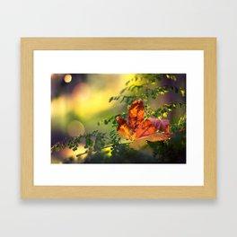 Graceful Framed Art Print